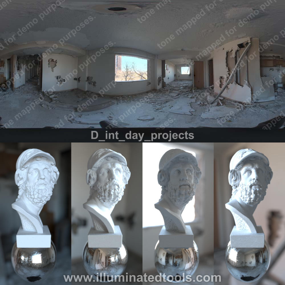 D int day projects