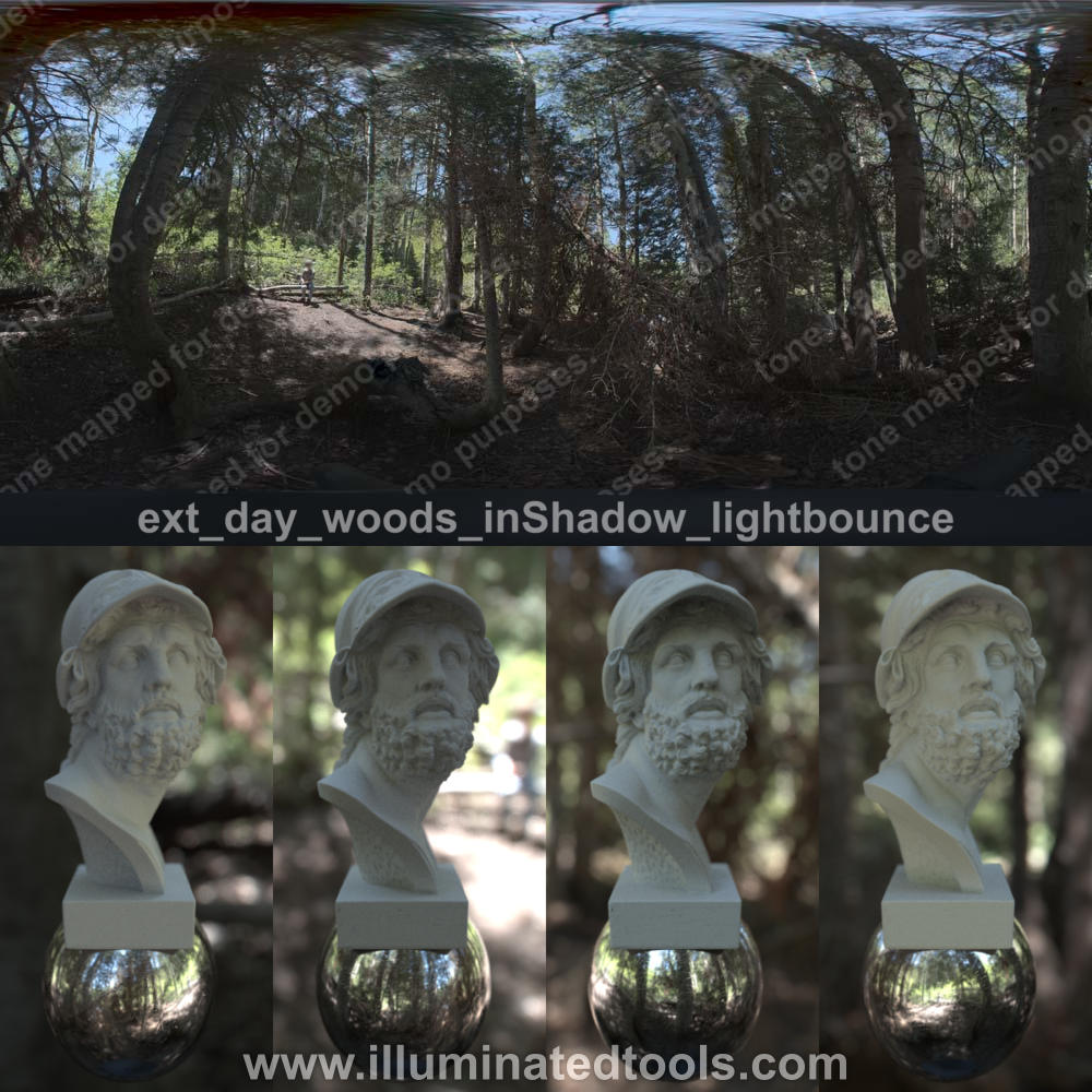 ext day woods inShadow lightbounce