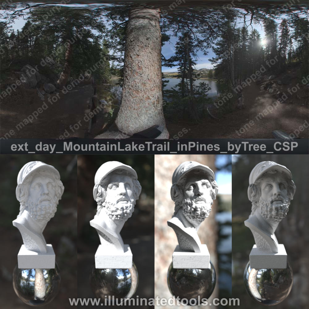 ext day MountainLakeTrail inPines byTree CSP